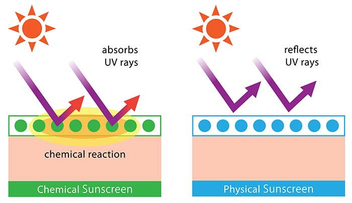 Physical And Chemical Sunscreens What Is The Difference
