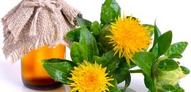 Is Safflower Oil Good For Your Skin How To Use It And Everything You Need To Know