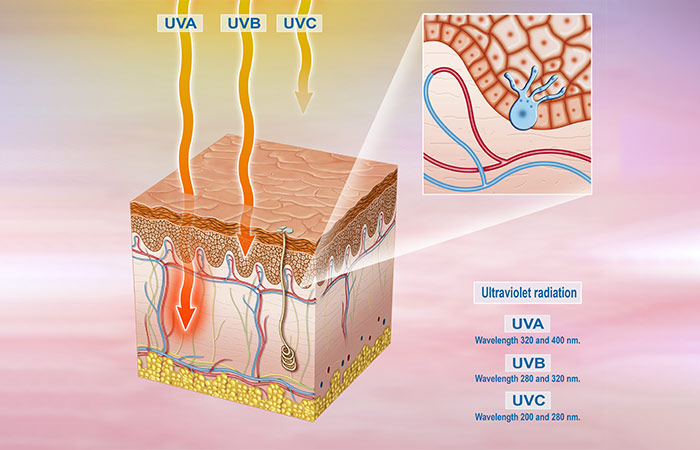 What's The Difference Between UVA And UVB Rays