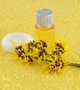 Witch Hazel For Acne: How To Use It Effectively
