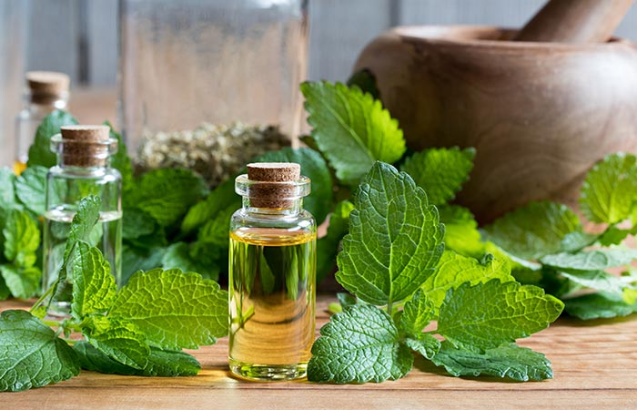 Lemon balm oil for Cold Sores in Hindi