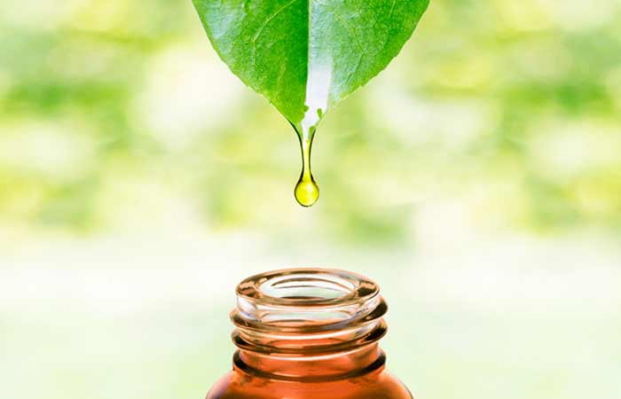 T-Tree Oil for Skin Pores in Hindi