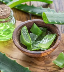 Aloe Vera for Pimples in Hindi