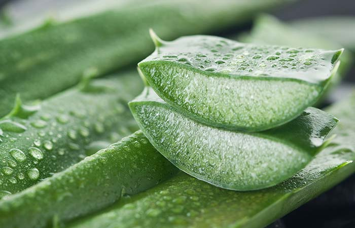 Aloe Vera - Natural Treatments For Sunburned Lips