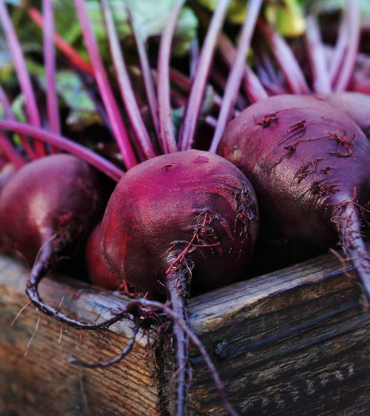Beetroot Benefits, Uses and Side Effects in Hindi