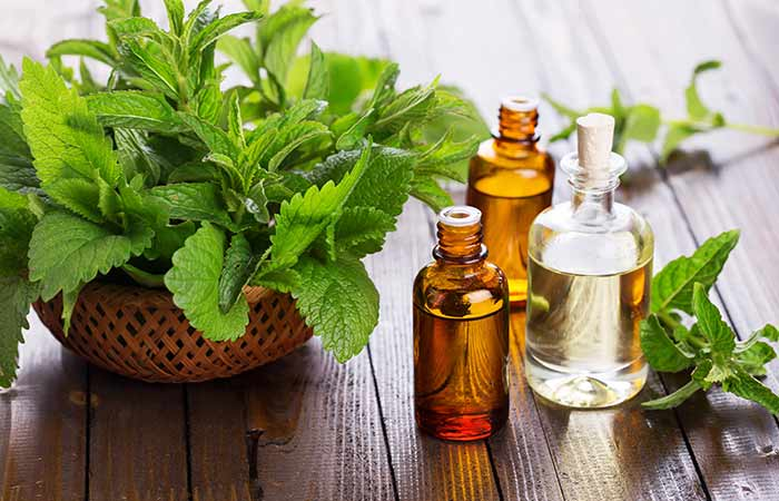 Essential Oil for Loss Of Smell And Taste in Hindi