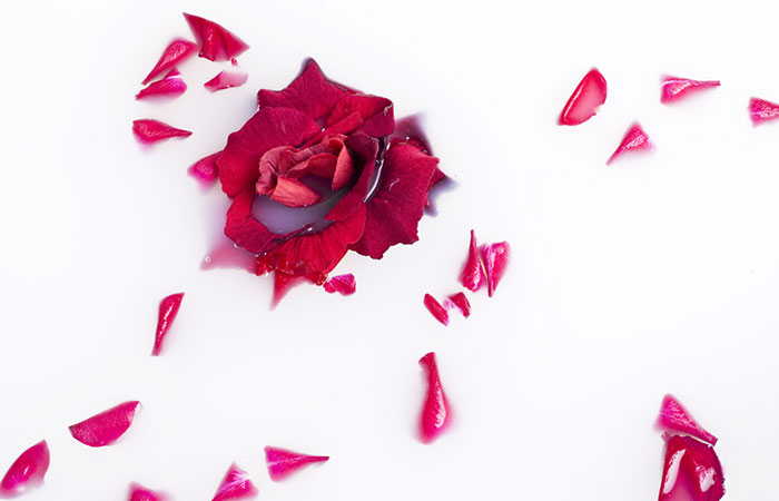 Rose Petals for Pink Lips in Hindi
