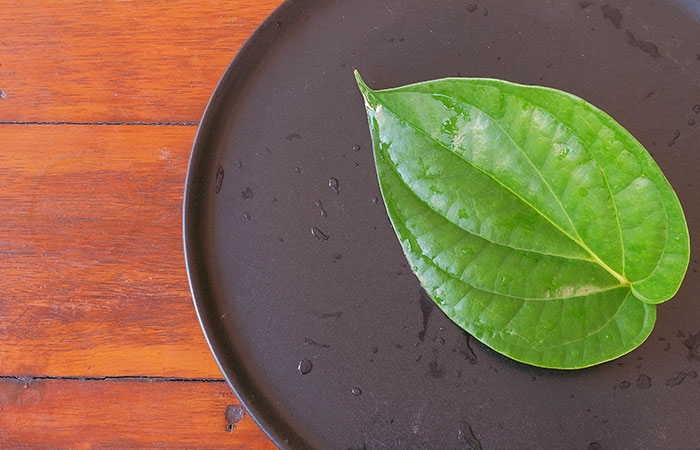 Baltod ke liye Betel Leaf