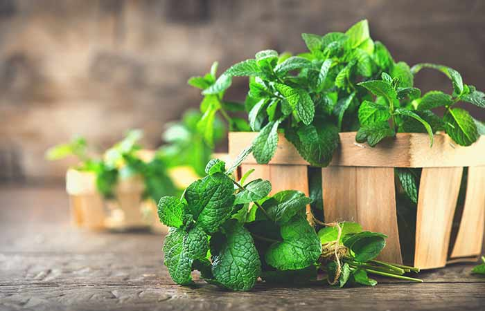 Peppermint for Loss Of Smell And Taste in Hindi