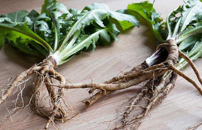 Dandelion Root - PUPPP Rash