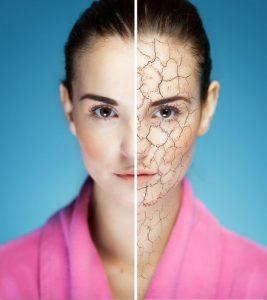 Dry Skin Care Tips in Hindi