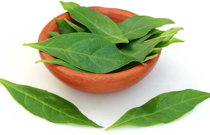 Lawsonia-Inermis-Leaves