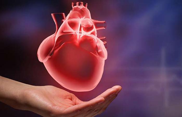 Salud del corazon