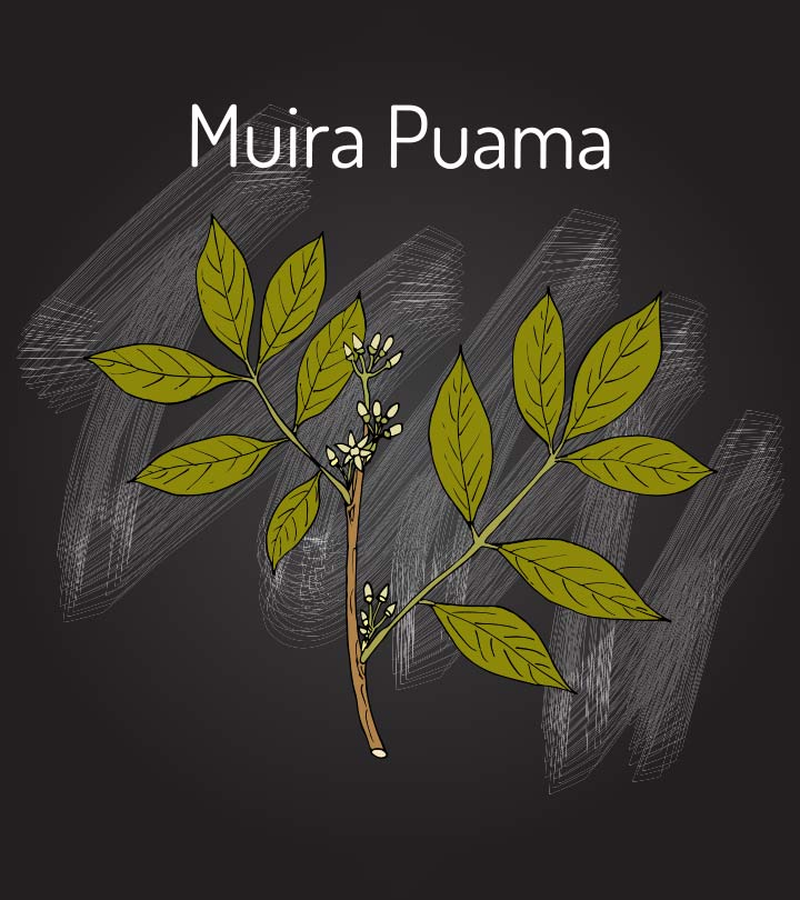 What Are The Benefits Of Muira Puama Proven By Science?