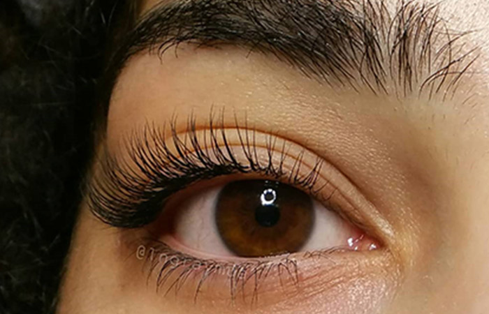 Synthetic Eyelash Extensions - Eyelash Extensions