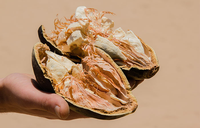 What's In The Baobab Fruit? What Makes It Special?