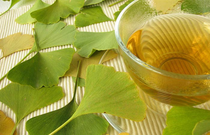 Ginkgo Biloba - Short-Term Memory Loss