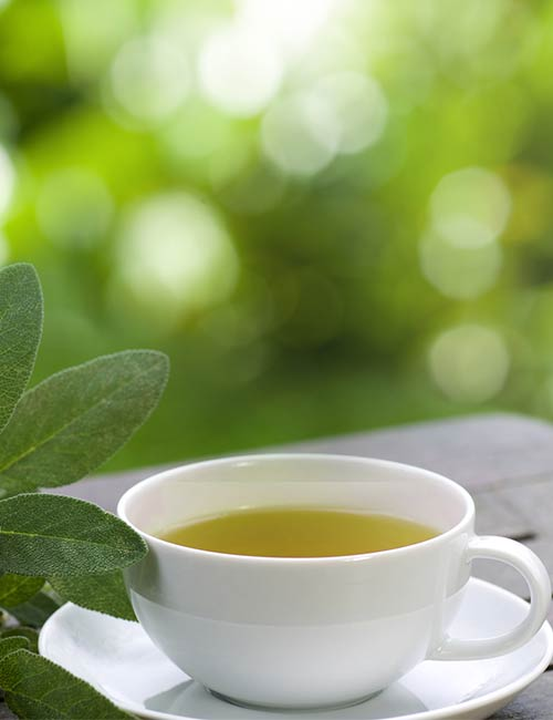 Green Tea Mach Tea