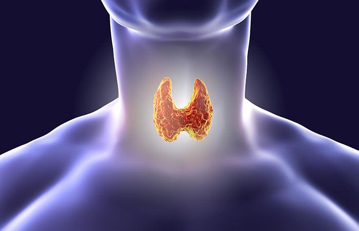 Types of Thyroid in Hindi