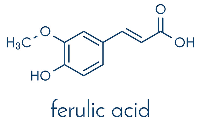 What Is Ferulic Acid