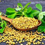 Methi Benefits in Tamil