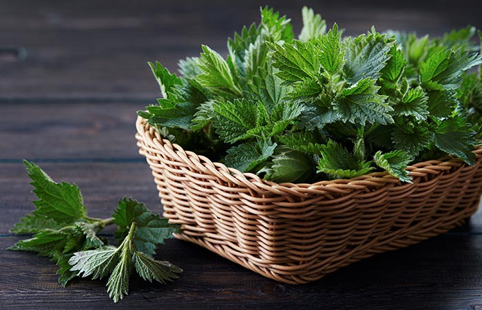 Nettles for arthritis in hindi