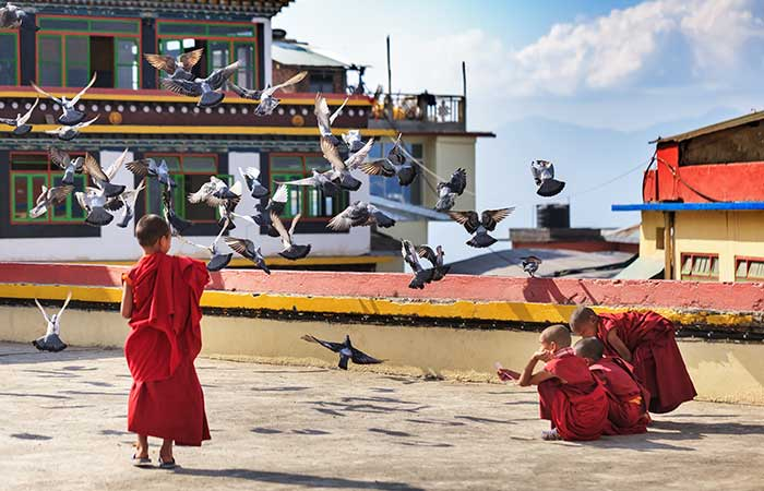 4. Try and learn more about spirituality - go through the monasteries in Sikkim