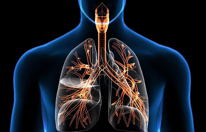 5. श्वसन संबंधी समस्या के लिए