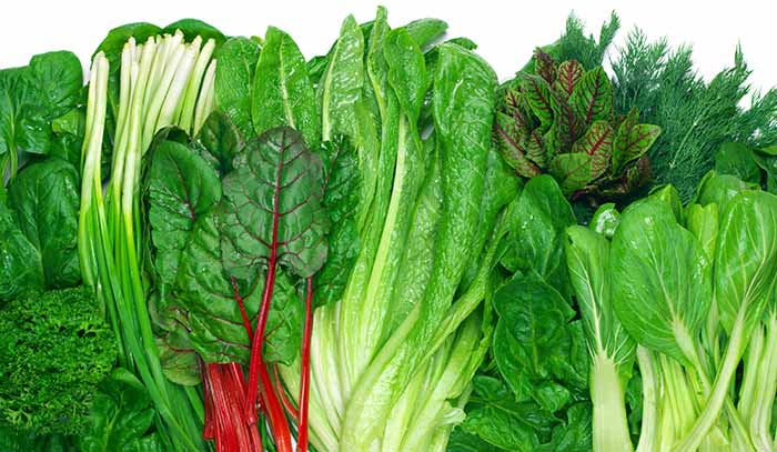 green-vegetables for Calcium in Hindi