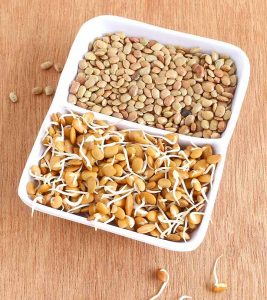 Horse Gram Benefits, Uses and Side Effects in Hindi