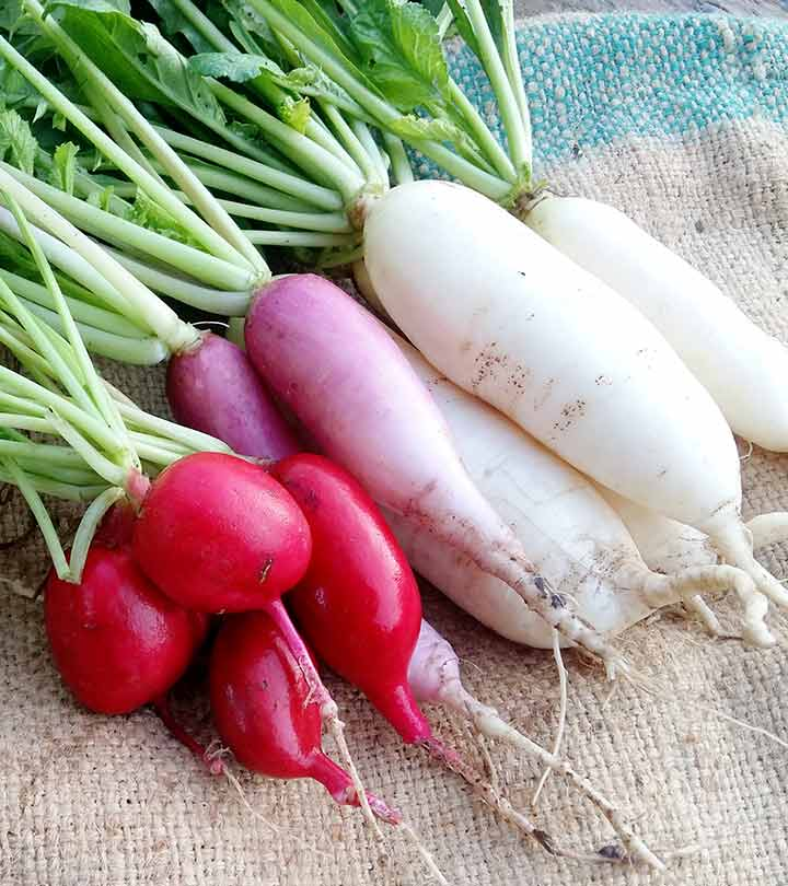 Radish (Mooli) Benefits, Uses and Side Effects in Hindi