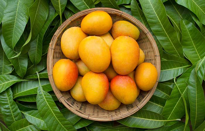 Types of Mango in Hindi