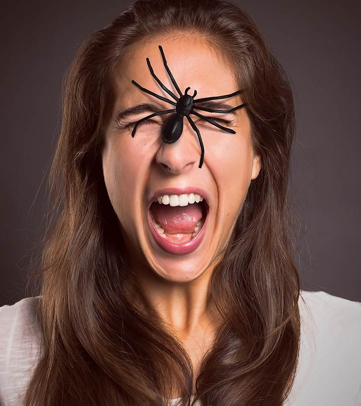 https://www.istockphoto.com/in/photo/brown-recluse-spider-gm804883492-130529479