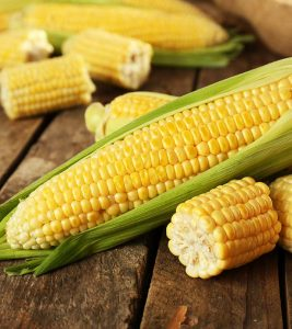 Corn Bhutta Benefits Uses and Side Effects in Hindi