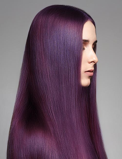 Deep Plum Purple
