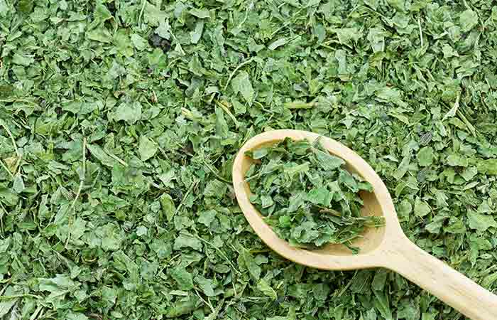 Nettle Leaf for anti-inflammatory properties in hindi