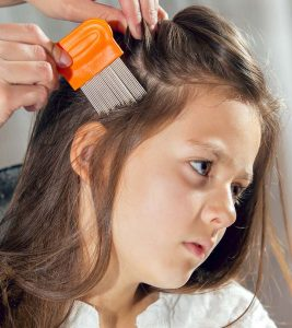 Home Remedies for Lice in Hindi
