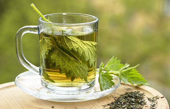 How to Use Nettle Leaf in Hindi