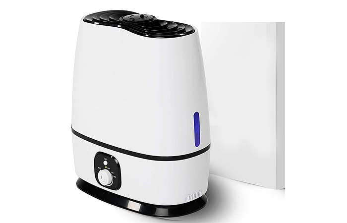 5. Everlasting Comfort Ultrasonic Cool Humidifier