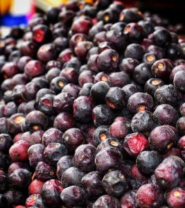 Falsa Fruit Benefits and ASide Effects in Hindi