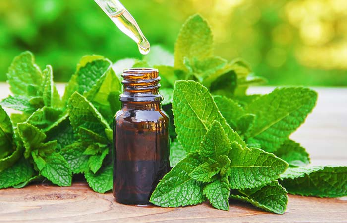 Benefits of Peppermint Oil in Hindi