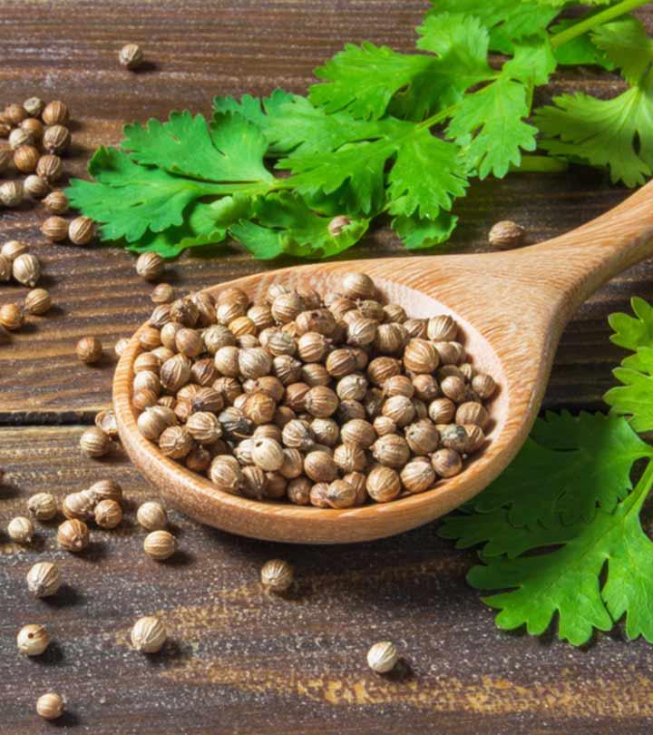 धनिया के बीज के 10 फायदे, उपयोग और नुकसान – Coriander Seeds Benefits and Uses in Hindi