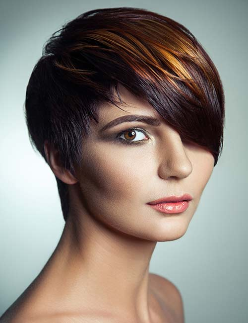 Highlighted Pixie Bob