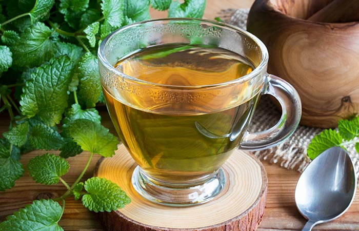 Benefits, Uses, and Side Effects of Lemon Balm on (2)