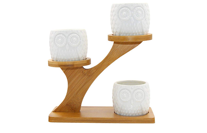 3 Pack Of Ceramic Juicy Plant Pots With Bamboo Tray (Owl Style)