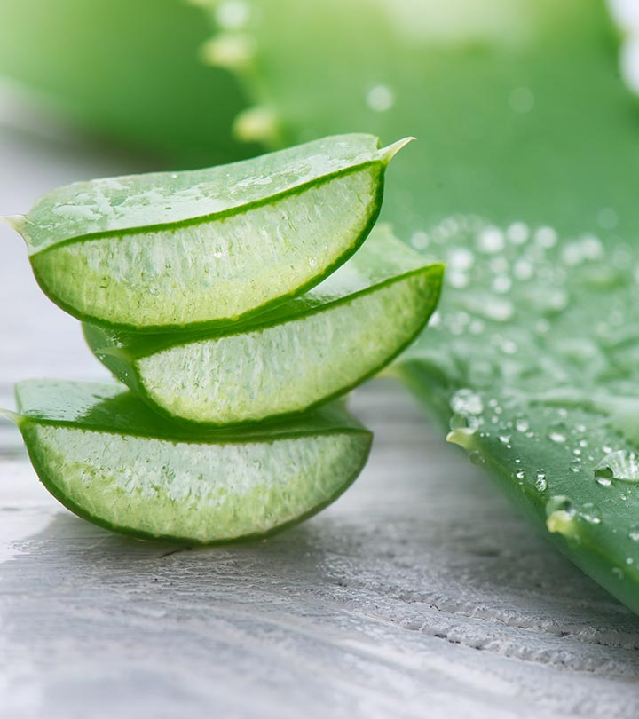 Aloe Vera Benefits, Uses and Side Effects in Bengali