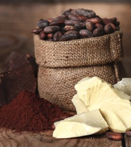 Cocoa Butter Benefits and Side Effects in Hindi