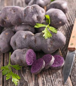 Do Purple Potatoes Grow Naturally Are They Good For You