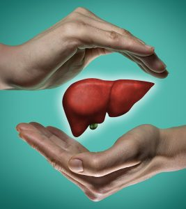 Healthy Liver in Hindi