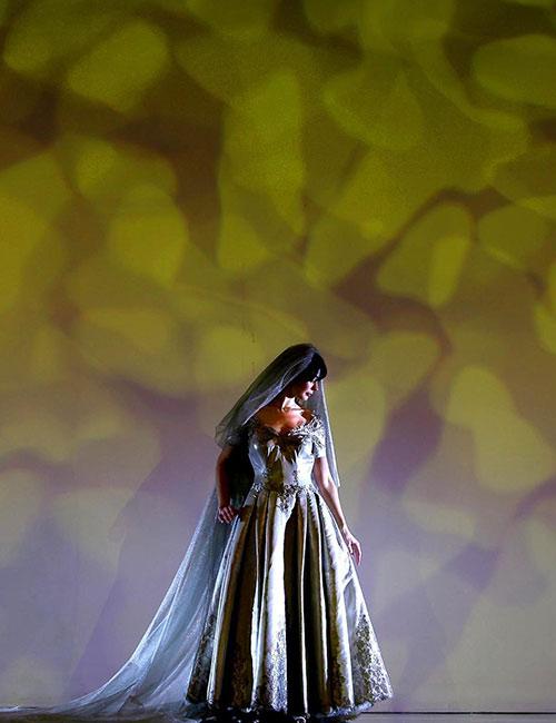 Mauro Adami's Wedding Dress – $372,000